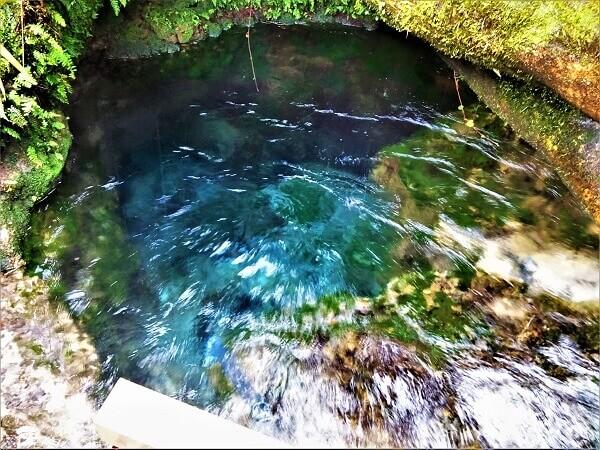 大出水の湧水