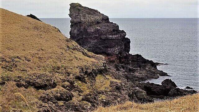 微笑むゴリラ岩