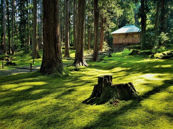 平泉白山神社