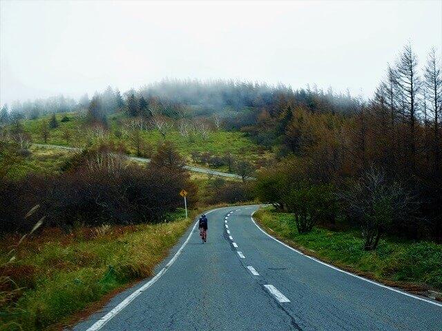 道路 山道
