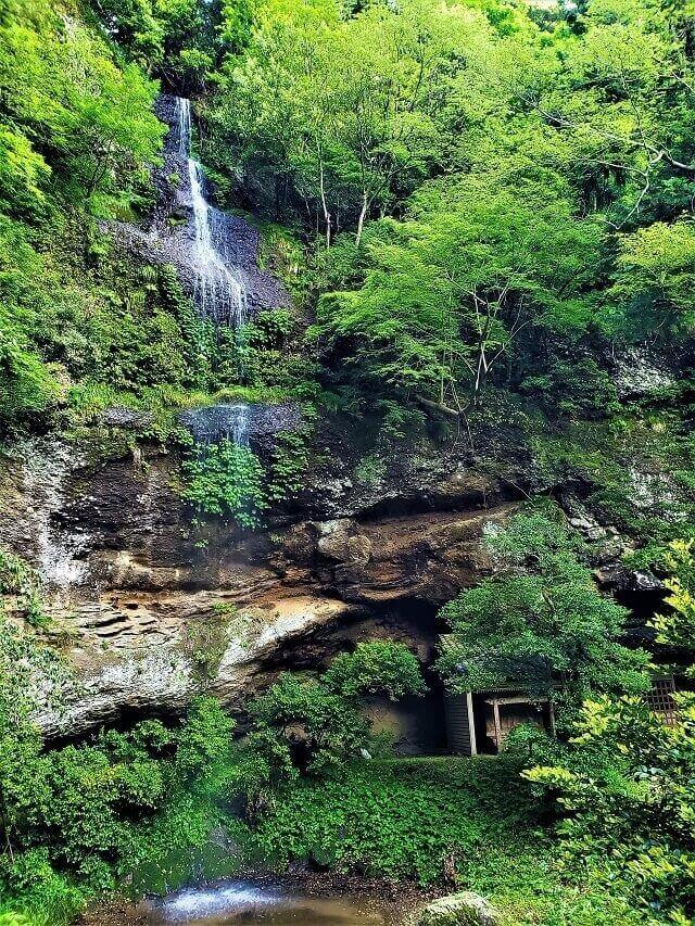 滝神社 桜滝